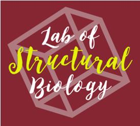 Laboratory of Structural Biology photo